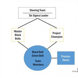 six sigma structure